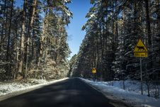 Free Gray Concrete Road Between Trees Royalty Free Stock Photos - 110174428