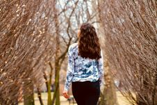 Free Woman In Blue And White Long-sleeved Shirt Walking Along Leafless Tree Stock Photos - 110174453
