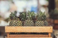 Free Pineapple Fruits On Wooden Crate Stock Photography - 110248582