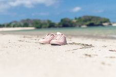 Free Selective Focus Of Pink Low-top Sneakers Royalty Free Stock Image - 110418026