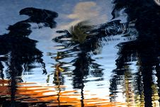 Free Reflection Of Trees On Ripple Water Royalty Free Stock Image - 110418056