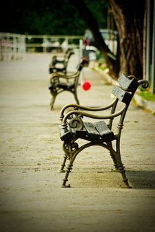 Free Furniture, Tree, Chair, Sitting Royalty Free Stock Photo - 110549745