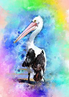 Free Beak, Pelican, Seabird, Painting Stock Photos - 110550263