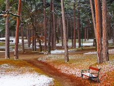 Free Brown Wooden Bench With Black Metal Frame On Pathway Beside Trees Stock Photos - 110589303