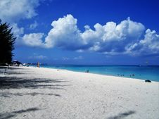 Free On A Beach In Cayman Island Stock Images - 110644514