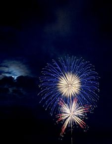 Free Blue And Red Brocade Fireworks At Night Royalty Free Stock Photo - 110654905