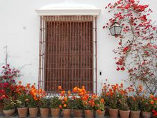 Free Brown Metal Window Frame Surrounded By Flowers Stock Photo - 110654980