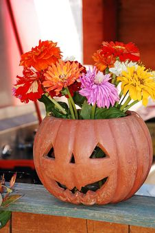 Free Pumpkin Vase With Flowers Stock Photo - 11083350