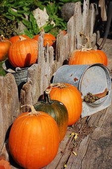 Free Halloween Pumpkins On Patio Stock Photos - 11083353