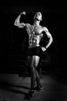 Free Athlete, Biceps, Black Stock Images - 110885614