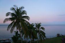 Free Sky, Palm Tree, Sea, Arecales Royalty Free Stock Photo - 110936605