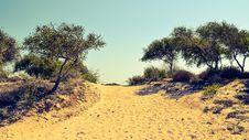 Free Ecosystem, Sky, Vegetation, Savanna Royalty Free Stock Images - 110937929