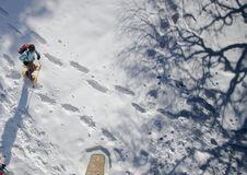 Free Snow, Sky, Extreme Sport, Winter Royalty Free Stock Image - 110950976