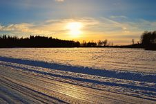 Free Silhouette Of Trees In Front Of Snow Field Durin Sunrise Royalty Free Stock Image - 110984026