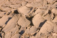 Free Dried Mud Royalty Free Stock Image - 1116166