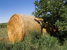 Role Of Straw Stock Images