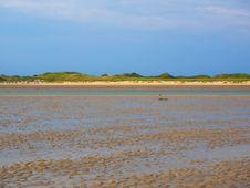 Free Sky, Shore, Sea, Mudflat Royalty Free Stock Images - 111026849