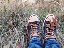 Free Footwear, Grass, Shoe, Plant Stock Images - 111027284