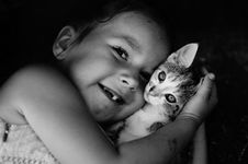 Free Face, Cat, Black, Black And White Royalty Free Stock Photo - 111027805