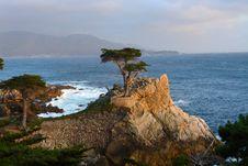 Free Coast, Tree, Sea, Sky Royalty Free Stock Images - 111027969