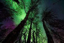 Free Aurora Borealis Royalty Free Stock Photography - 111070117