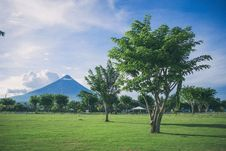 Free Landscape Photography Of Open Field With Tree With Mayon Volcano Background Stock Photos - 111070143