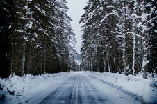 Free Snowy Road Between Trees Royalty Free Stock Images - 111170209