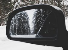 Free Photo Of Vehicle Wing Mirror With Tree As Reflection Stock Photos - 111170263
