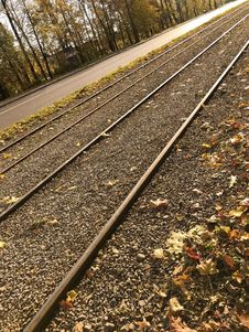 Free Track, Rail Transport, Line, Tree Royalty Free Stock Photos - 111485308