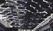 Free Black Umbrella Lot Royalty Free Stock Photo - 111545655