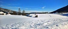 Free Photo Of Snow Near Tress Stock Photo - 111545710