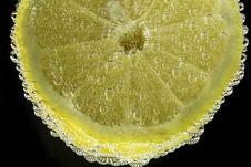 Free Sliced Lemon Stock Images - 111615194