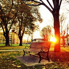 Free Brown Wooden Park Bench Under Green Leaf Tree During Sunset Royalty Free Stock Photography - 111615197