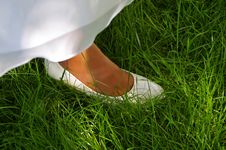 Free Grass, Green, Meadow, Plant Stock Photos - 111642703