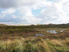 Free Grassland, Ecosystem, Highland, Wetland Royalty Free Stock Photos - 111643108