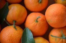 Free Clementine, Fruit, Tangerine, Produce Royalty Free Stock Image - 111643236