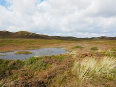 Free Grassland, Ecosystem, Nature Reserve, Loch Stock Images - 111643894