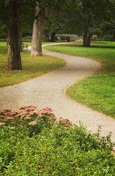 Free Path Green Park Royalty Free Stock Photo - 11177955