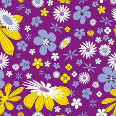 Free Flower, Flora, Purple, Yellow Stock Images - 111719674