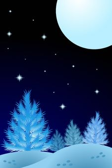 Free Winter Night Royalty Free Stock Photography - 11181557