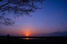 Free Silhouette Of Tree During Sunset Stock Image - 111823941