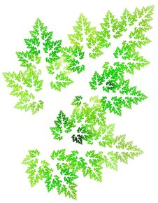 Detailed Leaf Royalty Free Stock Images