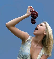 Free Grapes Stock Photography - 1121872