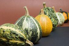 Free Pumpkins Royalty Free Stock Photo - 1122745
