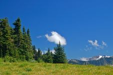 Free Mountain Meadow Stock Images - 1123314