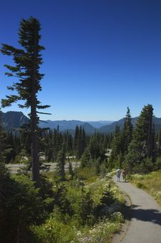 Free Late Summer - Pacific Northwest Stock Image - 1124271