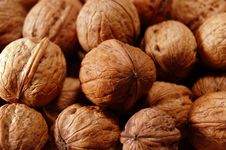Free Walnuts Royalty Free Stock Image - 1125696