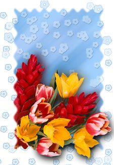 Free Congratulatory Card Stock Photos - 1127743