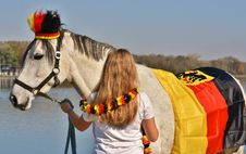 Free Horse, Horse Like Mammal, Horse Tack, Rein Stock Photo - 112042260