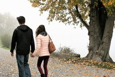 Free Photograph, Tree, Walking, Girl Royalty Free Stock Image - 112042976